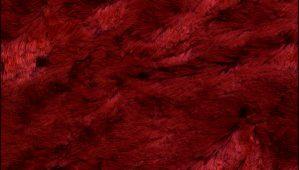 lipstick-red-poodle-velvet